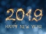 大成园林恭祝大家在新的一年里,身体健康,工作顺利,心想事成,万事如意!